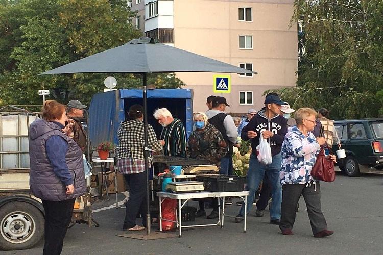 В Новокуйбышевске прошла сельскохозяйственная ярмарка
